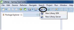 seleccionar configuracion liferay server