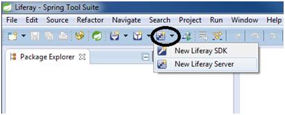 seleccionar-configuracion-liferay-server